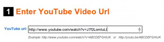 EmbedPlus URL des Videos eingeben