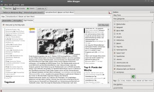 Blogilo Preview im Blogdesign